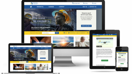 Tampa Electric Website
